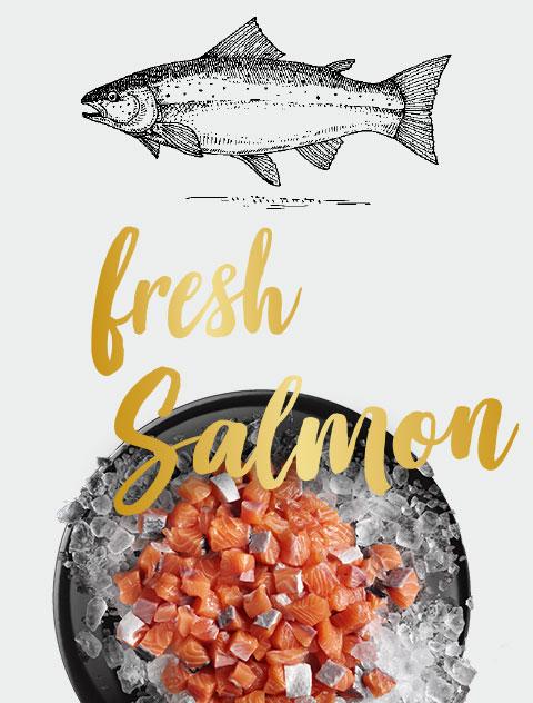 LEONARDO fresh salmon