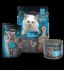 Leonardo-Kennlernpaket-Kitten